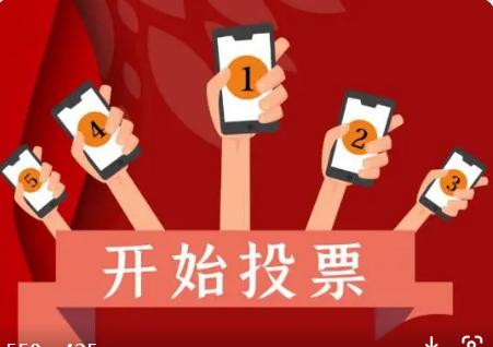人工投票软件是怎么操作投票的,软件刷票多少钱一票?